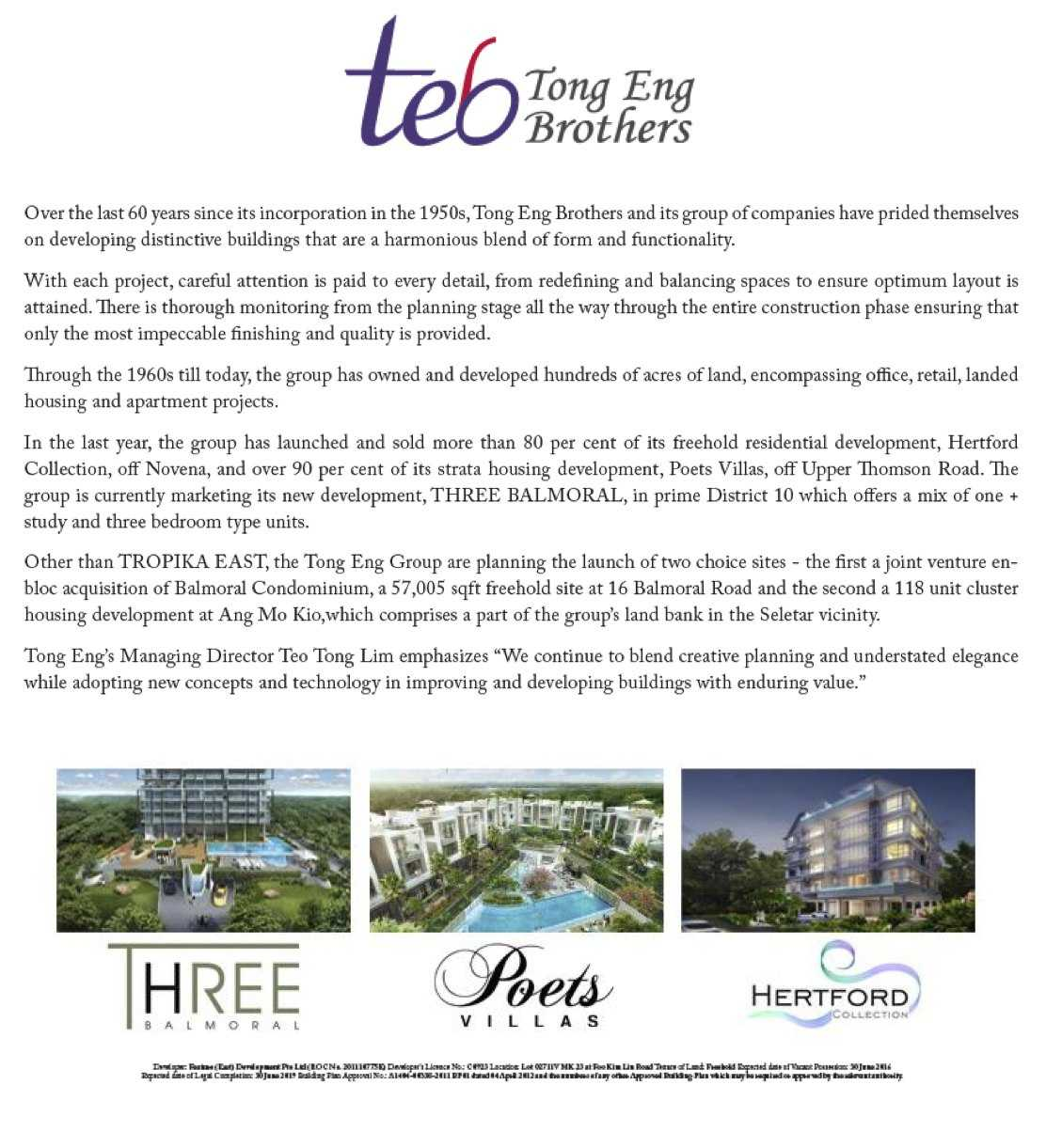 tong-eng-brother-developer-profile