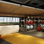 Gymnasium-at-level-1