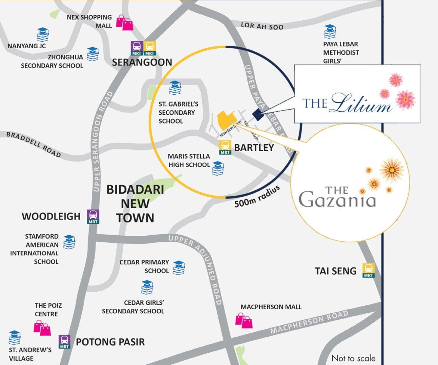 The-Lilium-Gazania-Location-Map