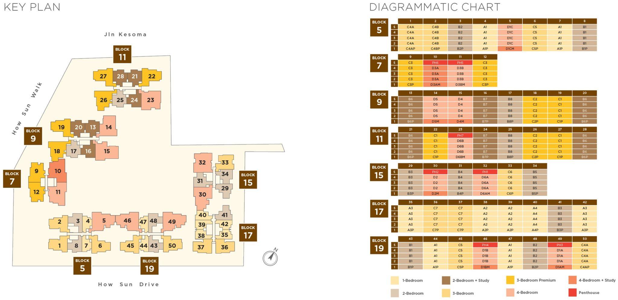 The_Gazania-Diagrammatic-chart