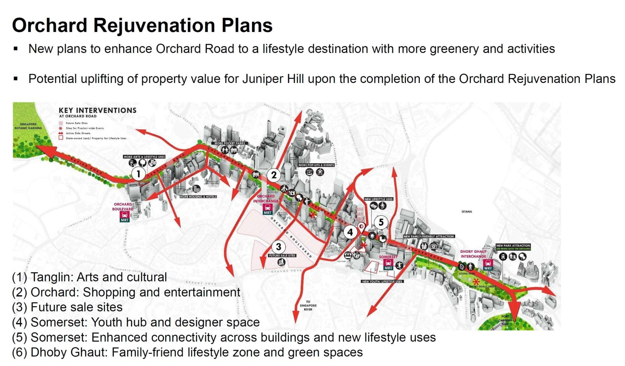 Orchard-Rejuvenation-Plans