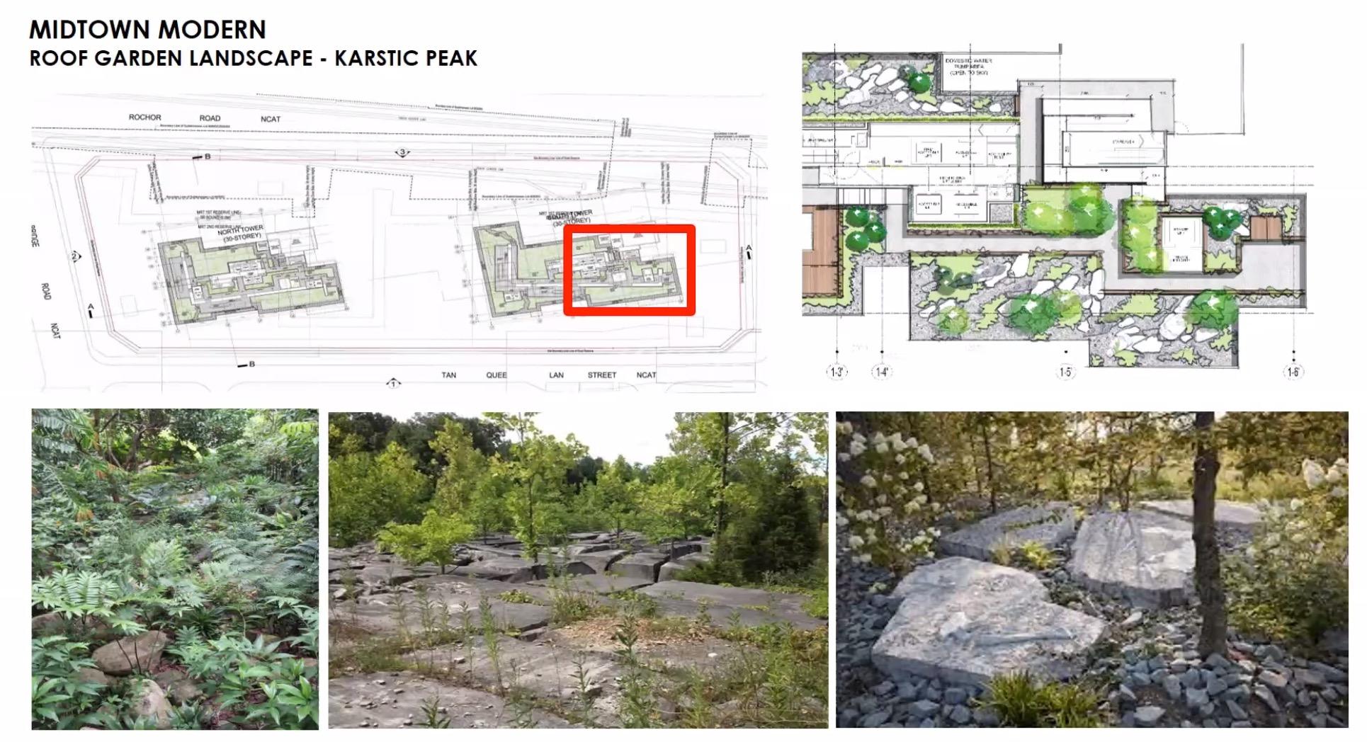 midtown-modern-Roof Garden Landscape