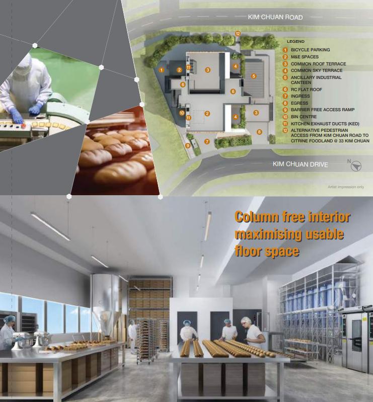 Citrine-foodland-column free design
